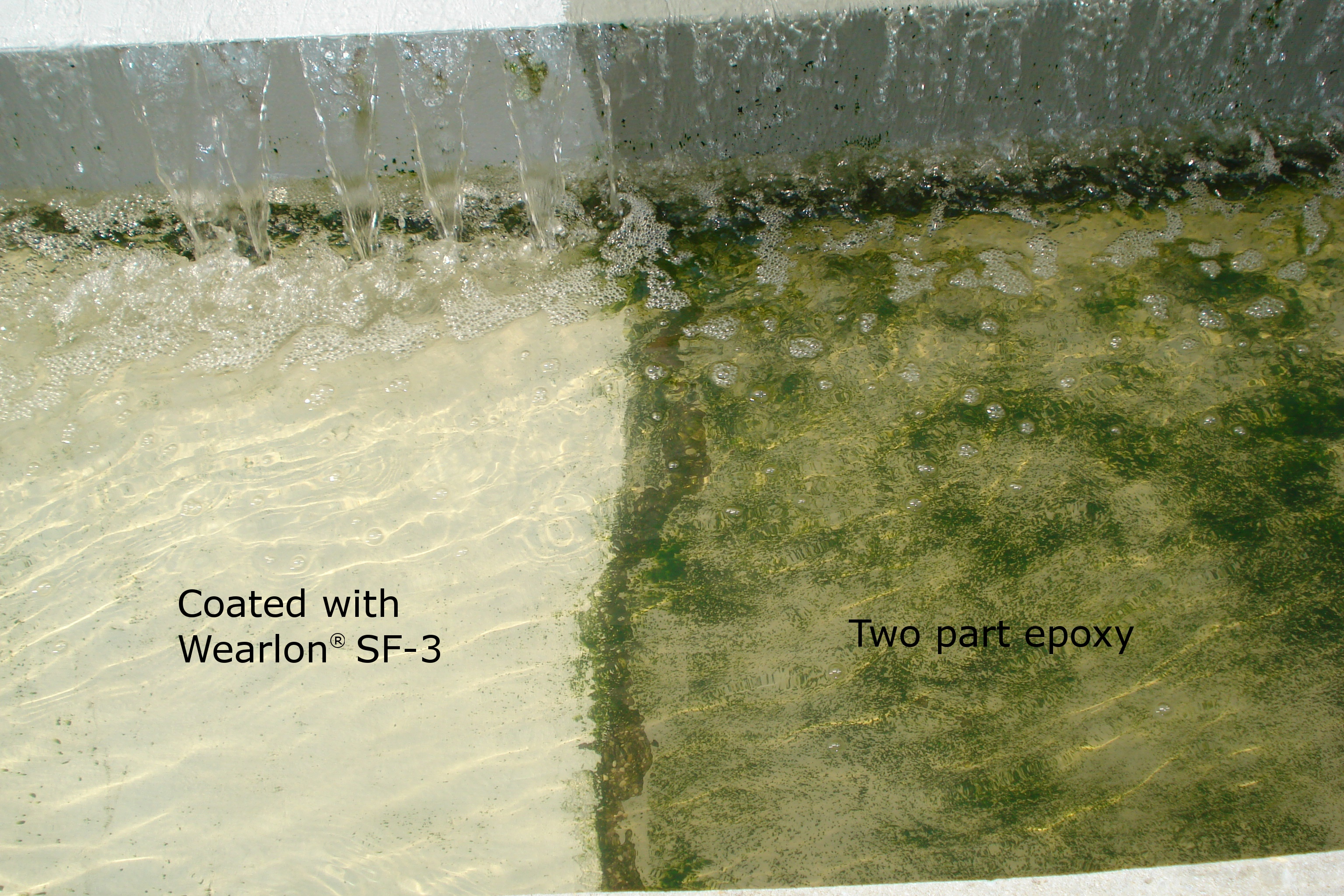 Wearlon coated concrete resisting algae, slime and fouling